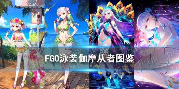 FGO泳装伽摩技能是什么-FGO仇阶泳装伽摩满破立绘卡面一览